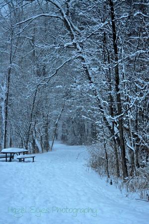 Winter.14