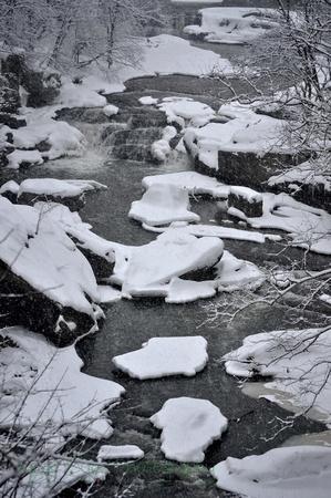 Winter.7