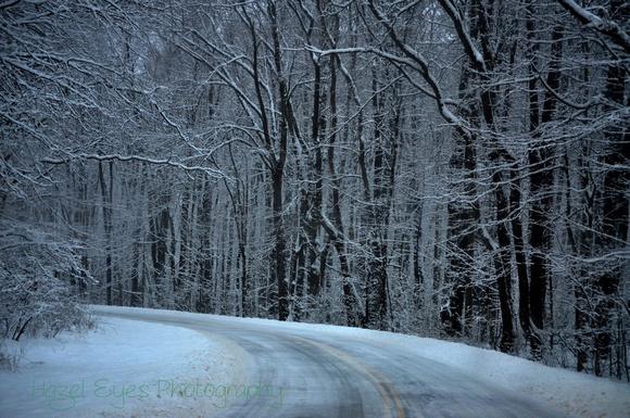 Winter.5